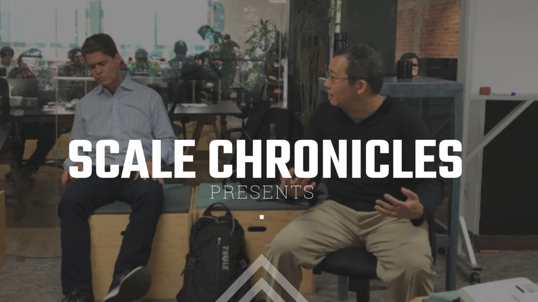 SCALE CHRONICLES: Let's talk about Blitzcaling - The Pursuit of Rapid Growth